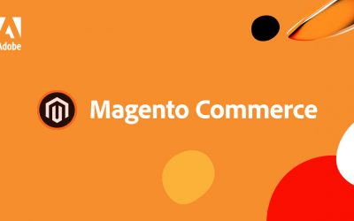 Quick Guide to Magento & Why It's Good For Your Business
