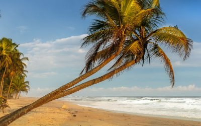 Top 6 Things to Do in the Ivory Coast