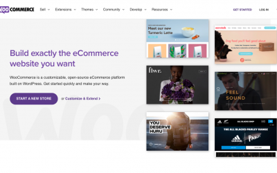 Quick Guide to WooCommerce And Why It's Good For Your Business